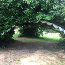 passage-sous-les-arbres-mariage-juillet-2017-chateau-lavalade